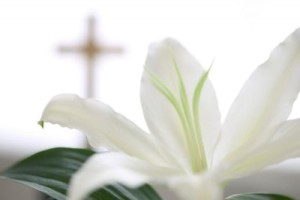 Easter_Lilly_Cross-400x266